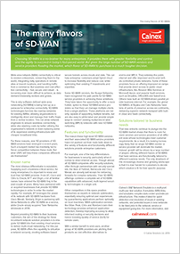 Flavors_of_SD-WAN
